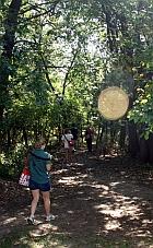 Writers walking through woods